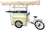 Ice Cream Cart DOLCE VITA 8 Flavors Battery in STAINLESS