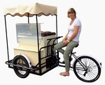 Ice Cream Cart DOLCE VITA 6 Flavors Basic