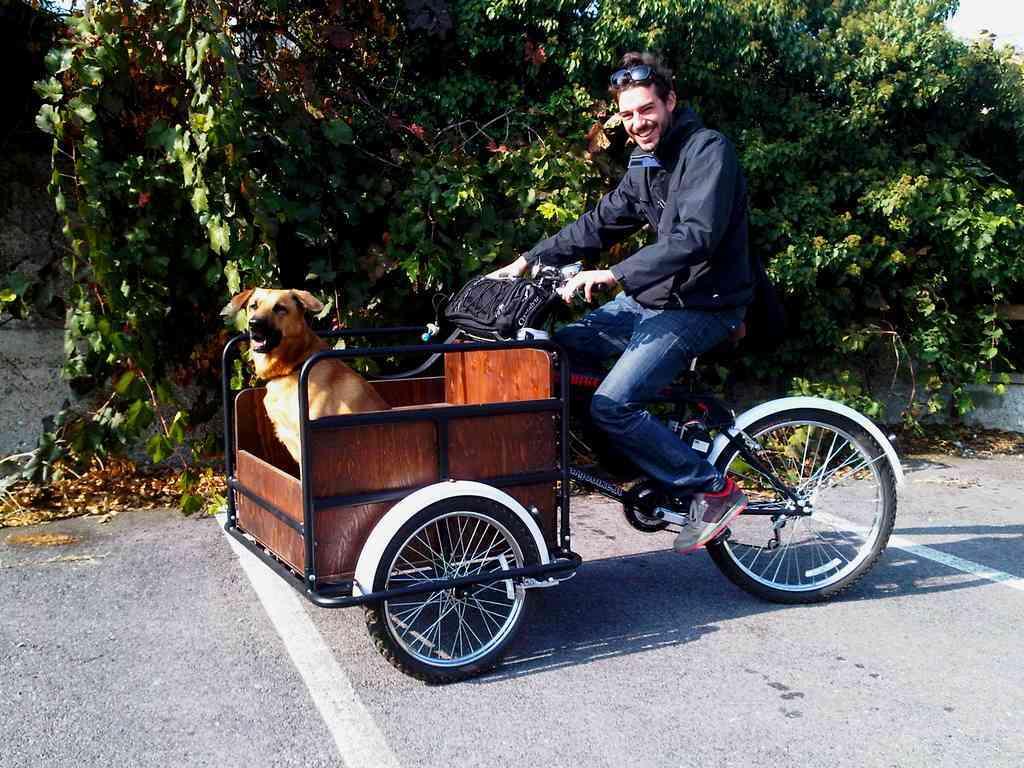 Titan 170 cargo mamy per trasportare spesa bambinio disabili - Carrello per bici porta cani ...